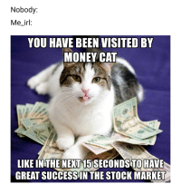 money cat: Nobody:  Me_irl:  YOU HAVE BEEN VISITED BY  MONEY CAT  LIKE INTHE NEXT 15 SECONDS TO HAVE  GREAT SUCCESS IN THE STOCK MARKET