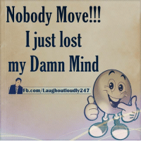 Memes, 🤖, and Lost-My-Mind: Nobody Move!!!  I just lost  my Damn Min d  Fb.com/Laughoutloudly247 I just lost my mind :)