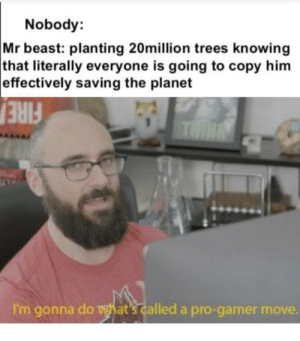 Such pro gamers: Nobody:  Mr beast: planting 20million trees knowing  that literally everyone is going to copy him  effectively saving the planet  THIN  FIRE  I'm gonna do what's called a pro-gamer move. Such pro gamers