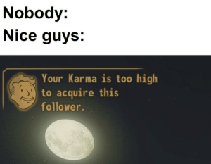 Fallout meme: Nobody:  Nice guys:  Your Karma is too high  to acquire this  follower. Fallout meme