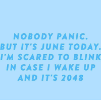 Today, Case, and Blink: NOBODY PANIC.  BUT IT'S JUNE TODAY  I'M SCARED TO BLINK  IN CASE I WAKE U  AND IT'S 2048