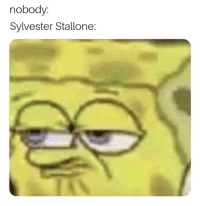 Sylvester Stallone, Stallone, and Sylvester: nobody  Sylvester Stallone: I have no interesting title