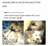 NOOOOO OMG: nobody talk to me for the rest of the  year  sam @_samanthaskylar  i don't even know if nala realizes this, but it  hurts my heart NOOOOO OMG