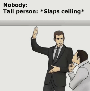 Tall Person: Nobody:  Tall person: *Slaps ceiling*