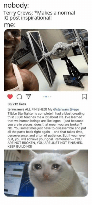 Lego, Life, and Terry Crews: nobody:  Terry Crews:*Makes a normal  IG post inspirational!  me:  36,212 likes  terrycrews ALL FINISHED! My @starwars @lego  TIE/Ln Starfighter is complete! I had a blast creating  this! LEGO teaches me a lot about life. I've learned  that we human beings are like legos-just because  you are in pieces, does that mean you are broken?  NO. You sometimes just have to disassemble and put  all the parts back right again- and that takes time,  perseverance, and a ton of patience. But if you never  quit, you will achieve your goal. Remember- YOU  ARE NOT BROKEN, YOU ARE JUST NOT FINISHED.  KEEP BUILDING!  wwww Terry Crews is so wholesome❤