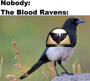 Get it? hehehe... hehe.. I'll show myself out: Nobody:  The Blood Ravens: Get it? hehehe... hehe.. I'll show myself out