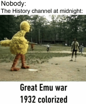 History, Never, and Midnight: Nobody:  The History channel at midnight:  Great Emu war  1932 colorized War never changes