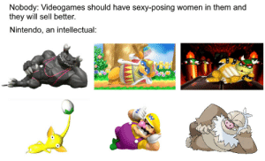 it B tru: Nobody: Videogames should have sexy-posing women in them and  they will sell better.  Nintendo, an intellectual: it B tru