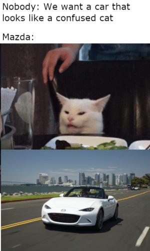 I can't unsee this. by boredatworkyo MORE MEMES: Nobody: We want a car that  looks like a confused cat  Mazda: I can't unsee this. by boredatworkyo MORE MEMES