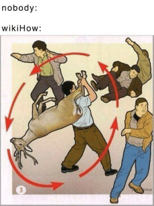 Wikihow and Nobody: nobody:  wikiHow: