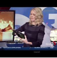 Funny, News, and Vine:  #NoChill Vines  es ENTICES & EMPLOYERS  Global  GLOBAL NEWS  8:40  baesil Nailed it😂😂😂
