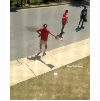 Ass, Funny, and Run: This is why whenever you see black folks running , You better run along with they ass😭 😭