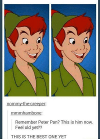Memes, Peter Pan, and Best: nommy-the-creeper:  mmmhambone  Remember Peter Pan? This is him now.  Feel old yet??  THIS IS THE BEST ONE YET