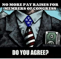 Memes, 🤖, and You: NOMOREPAYRAISES FOR  MEMBERS OFCONGRESS  DO YOU AGREE?