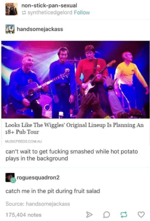Meirl: non-stick-pan-sexual  syntheticedgelord Follow  handsomejackass  Looks Like The Wiggles' Original Lineup Is Planning An  18+ Pub Tour  MUSICFEEDS.COM.AU  can't wait to get fucking smashed while hot potato  plays in the background  roguesquadron2  catch me in the pit during fruit salad  Source: handsomejackass  175,404 notes Meirl