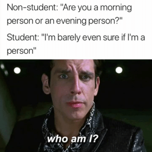 "Student, Who, and You: Non-student: ""Are you a morning  person or an evening person?""  Student: ""I'm barely even sure if l'm a  person""  who am 1? I'm at a loss 😂😭"