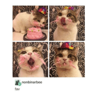SUCH BEAUTY!!!!!!!!!! - Max textpost textposts: nonbinarbee  fav SUCH BEAUTY!!!!!!!!!! - Max textpost textposts