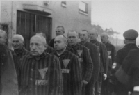 """nonbinarysapphic:  gemfyre:  lauralandons:  thereadersmuse:  jehovahhthickness:  lightning-st0rm:  pearlmito:  smootymormonhelldream:  stripedsilverfeline:  anti-clerical:  ramirezbundydahmer:  When the Nazi concentration camps were liberated by the Allies, it was a time of great jubilation for the tens of thousands of people incarcerated in them. But an often forgotten fact of this time is that prisoners who happened to be wearing the pink triangle (the Nazis' way of marking and identifying homosexuals) were forced to serve out the rest of their sentence. This was due to a part of German law simply known as """"Paragraph 175"""" which criminalized homosexuality. The law wasn't repealed until 1969.  This should be required learning, internationally.  You need to know this. You need to remember this. This is not something to swept under the carpet nor be forgotten. Never. Too many have died for the way they have loved. That needs stop now. Make it stop?  I did a report on this in my World History class my sophomore year of high school. It was incredibly unsettling.  My teacher shown the class this. Mostly everyone in the class felt uncomfortable.  I have reblogged this in the past, but it is so ironic that it comes across my dash right now. I a currently working as a docent at my city's Holocaust Education Center (( I say currently because I've also done research and translation for them )) and out current exhibit is one on loan from the United States Holocaust Memorial Museum ((USHMM)). This is a little known historical fact that Paragraph 175 was not repealed after the war and those convicted under Nazi laws as a danger to society because they were gay were not released because they had be convicted in a court of law. There was no liberation or justice for them as they weren't considered criminals, or even victims for that matter. They were criminals who remained persecuted and ostracized and kept on the fringes of society for decades after the war had been won. Paragrap"""