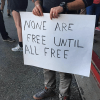 """Memes, 🤖, and Ultima: NONE ARE  FREE UNTIL  FREE Let them in! ✊""""NONE ARE FREE UNTIL ALL ARE FREE!"""" NoBanNoWall . 📸 PC: @pangea.ultima - unconstitutional NotOnOurWatch EqualityForAll SpeakUp TheTimeIsNow - NoMuslimRegistry NoMuslimBan"""