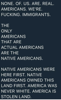 America, Family, and Fucking: NONE. OF. US. ARE. REAL.  AMERICANS. WE'RE.  FUCKING. IMMIGRANTS.  THE  ONLY  AMERICANS  THAT ARE  ACTUAL AMERICANS  ARE THE  NATIVE AMERICANS.  NATIVE AMERICANS WERE  HERE FIRST. NATIVE  AMERICANS OWNED THIS  LAND FIRST. AMERICA WAS  NEVER WHITE. AMERICA IS  STOLEN LAND.