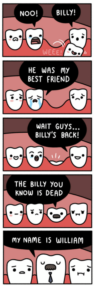 Best Friend, Best, and Back: NOO! BILLY!  WEEE!  HE WAS MY  BEST FRIEND  WAIT GUYS...  BILLY'S BACK!  THE BILLy YOU  KNOW IS DEAD  MY NAME IS WILLIAM Goodbye Billy