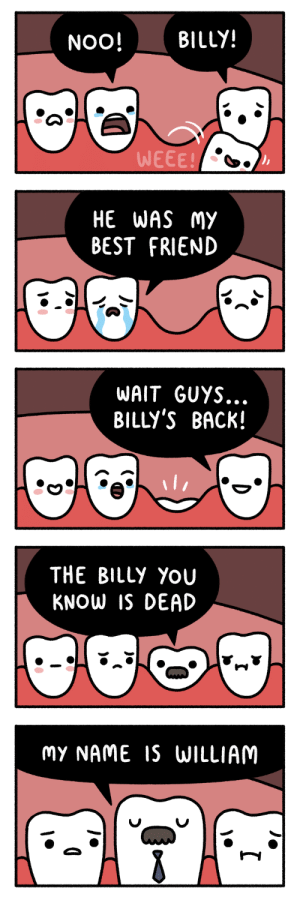 positivityandfruit:  why does this make me laugh so much : NOO! BILLY!  WEEE   HE WAS My  BEST FRIEND   WAIT GUYS.  BILLY'S BACK!   THE BILLy YOU  KNOW IS DEAD   MY NAME S WILLIAM positivityandfruit:  why does this make me laugh so much