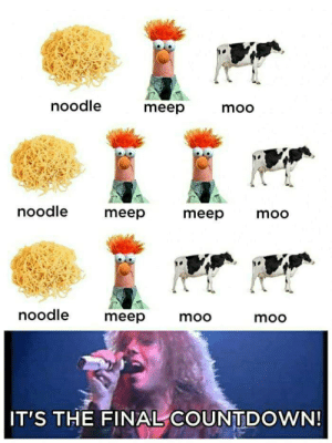 Its The Final Countdown: noodle  meep  moo  noodle  meep  meep moo  noodle  meep  moo  moo  IT'S THE FINAL COUNTDOWN