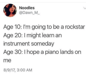 Lands: Noodles  @Dawn_M_  Age 10: I'm going to be a rockstar  Age 20: Imight learn an  instrument someday  Age 30: I hope a piano lands on  me  8/9/17, 3:00 AM