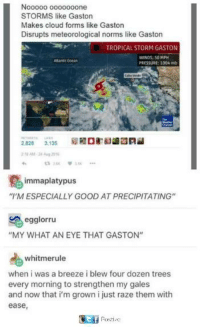"Memes, Pressure, and Cloud: Nooooo o000ooone  STORMS like Gaston  Makes cloud forms like Gaston  Disrupts meteorological norms like Gaston  TROPICAL STORM GASTON  WINDS: 50 MPH  PRESSURE: 1004 mb  Attanbic ocean  t32烂  븅3.tx  immaplatypus  ""M ESPECIALLY GOOD AT PRECIPITATING""  egglorru  ""MY WHAT AN EYE THAT GASTON""  whitmerule  when i was a breeze i blew four dozen trees  every morning to strengthen my gales  and now that i'm grown i just raze them with  ease,"