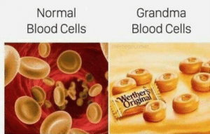 Funny, Grandma, and Blood: Normal  Blood Cells  Grandma  Blood Cells  erther  igina Normal blood cells vs. grandma's blood cells via /r/funny https://ift.tt/2LNJaEH