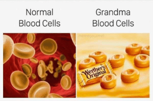 Grandma, Science, and Blood: Normal  Blood Cells  Grandma  Blood Cells  mernegourmet  erther Basic Science