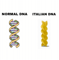 Science, bitch: NORMAL DNA ITALIAN DNA. Science, bitch