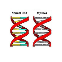 Normal DNA  My DNA  MEMES MEMESMEMES MET  SILMEMES  MESUME  IMES  AMES MEMES MEMES  MEMES MEMES MEMES MEM If this isn't me then Hitler was the worst person to ever exist