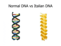 Normal DNA vs Italian DNA like Unexpected Dank Memes (y)