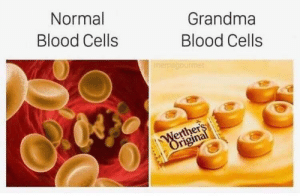 awesomacious:  This is everyone's grandma irl: Normal  Grandma  Blood Cells  Blood Cells  memegourmet  Werthers  Original awesomacious:  This is everyone's grandma irl