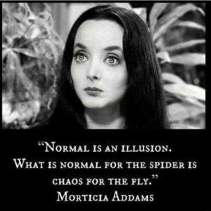 "Blow a train..: ""NORMAL IS AN ILLUSION.  WHAT IS NORMAL FOR THE SPIDER IS  CHAOS FOR THE FLY.'  MORTICIA ADDAMS Blow a train.."
