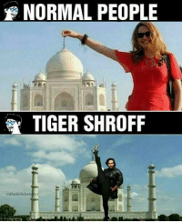 Memes, Tiger, and Tigers: NORMAL PEOPLE  TIGER SHROFF