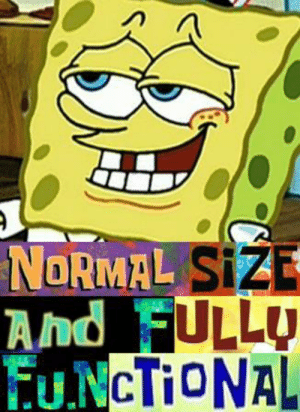 SpongeBob, Normal, and Patrick: NORMAL SIZE  And_FULLU  EUNCTIONAL patrick thats not a ride