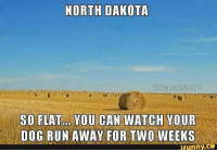 dog run: NORTH DAKOTA  Meanwhile ND  SO FLAT... YOU CAN WATCH YOUR  DOG RUN AWAY FOR TWO WEEKS  ,CO  funny