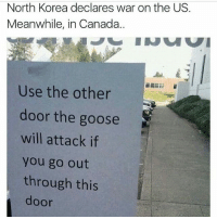 meanwhileincanada 😂😂😂😂: North Korea declares war on the US.  Meanwhile, in Canada  Use the other  door the goose  will attack if  you go out  through this  door meanwhileincanada 😂😂😂😂
