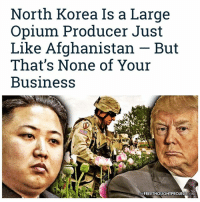 "Drugs, Facebook, and Memes: North Korea Is a Large  Opium Producer Just  Like Afghanistan But  That's None of Your  Business  TNEFREETHOUGHTPROJECT COM 💭 Make no mistake, North Korean intervention has NOTHING to do with keeping Americans safe... 💭 REPORT: (link to article in our bio) Prior to the U.S. invasion and occupation that sent production and cultivation skyrocketing 35-fold in just the first 13 years, the Taliban had successfully decimated the opium poppy crop in Afghanistan. . Nearly 16 years later, Afghanistan's lucrative drug trafficking business is still roaring along unhindered, and — with U.S. troops literally guarding the occupied nation's 90-percent share of the world's opium supply — potential competitors rightly seemed scarce. . That is, until NorthKorea just said 'no' to the Drug War. . ""In its early stage, the KimJongUn regime declared a war against drugs, getting rid of poppy fields,"" Kang Cheol-hwan, president of the defector organization, North Korea Strategy Center, told Yonhap News Agency last month. ""But now they are cultivating them again.""... . - Continued - . 💭 Read the FULL Report: (link in bio) http:-thefreethoughtproject.com-norht-korea-opium-trade-afghanistan- 💭 Join Us: @TheFreeThoughtProject 💭 TheFreeThoughtProject 💭 LIKE our Facebook page & Visit our website for more News and Information. Link in Bio... 💭 www.TheFreeThoughtProject.com"