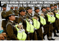 North Korean infantry carrying emergency rations to the front lines [1952]: NORTH KOREAN INFANTRY CARRYING EMERGENCY  RATIONS TOTHE FRONT LINES [19521 North Korean infantry carrying emergency rations to the front lines [1952]