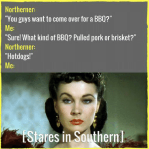 """33 """"Bless Your Heart"""" Memes For All Y'all Southerners: Northerner:  """"You guys want to come over for a BB0?""""  Me:  Sure! What kind of BBQ? Pulled pork or brisket?""""  Northerner:  Hotdogs!  Me:  iStares in Southernl 33 """"Bless Your Heart"""" Memes For All Y'all Southerners"""