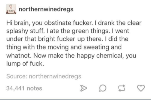 me🏃irl: northernwinedregs  Hi brain, you obstinate fucker. I drank the clear  splashy stuff. I ate the green things. I went  under that bright fucker up there. I did the  thing with the moving and sweating and  whatnot. Now make the happy chemical, you  lump of fuck.  Source: northernwinedregs  34,441 notes me🏃irl