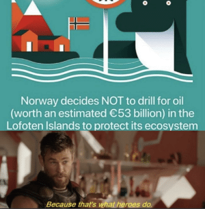 Good Norway by OG_Builds MORE MEMES: Norway decides NOT to drill for oil  (worth an estimated 53 billion) in the  Lofoten Islands to protect its ecosystem  Because that's what heroes do. Good Norway by OG_Builds MORE MEMES