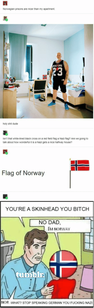 They live better than I do: Norwegian prisons are nicer than my apartment  POSTURE  23  holy shit dude  Isn't that white-lined black cross on a red field flag a Nazi flag? Are we going to  talk about how wonderful it is a Nazi gets a nice halfway house?  Flag of Norway  YOU'RE A SKINHEAD YOU BITCH  NO DAD,  M NORWAY  tumblr  NOR -WHAT? STOP SPEAKING GERMAN YOU FUCKING NAZI They live better than I do