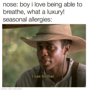 an epidemic: nose: boy i love being able to  breathe, what a luxury!  seasonal allergies:  I can fix that.  made with mematic an epidemic