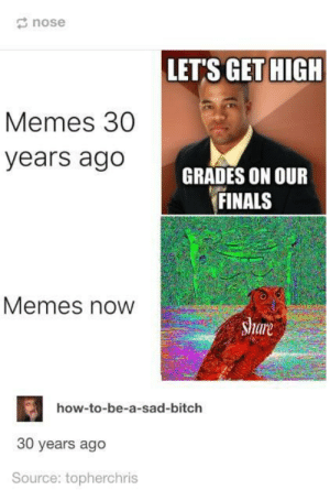 Memes - then and now: nose  LET'S GET HIGH  Memes 30  years ago  GRADES ON OUR  FINALS  Memes now  are  how-to-be-a-sad-bitch  30 years ago  Source: topherchris Memes - then and now