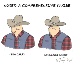 a guide to noses [OC]: NOSES: A COMPREHENSIVE GUIDE  OPEN CARRY  CONCEALED CARRY  eqe a guide to noses [OC]