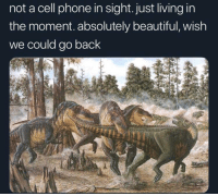 Beautiful, Phone, and Living: not a cell phone in sight. just living in  the moment. absolutely beautiful, wish  we could go back me irl